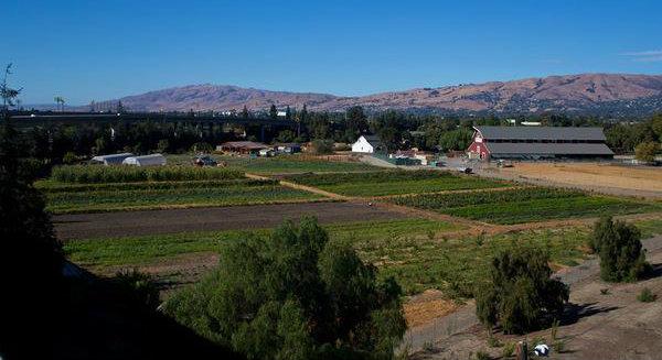 Farm Panorama 3